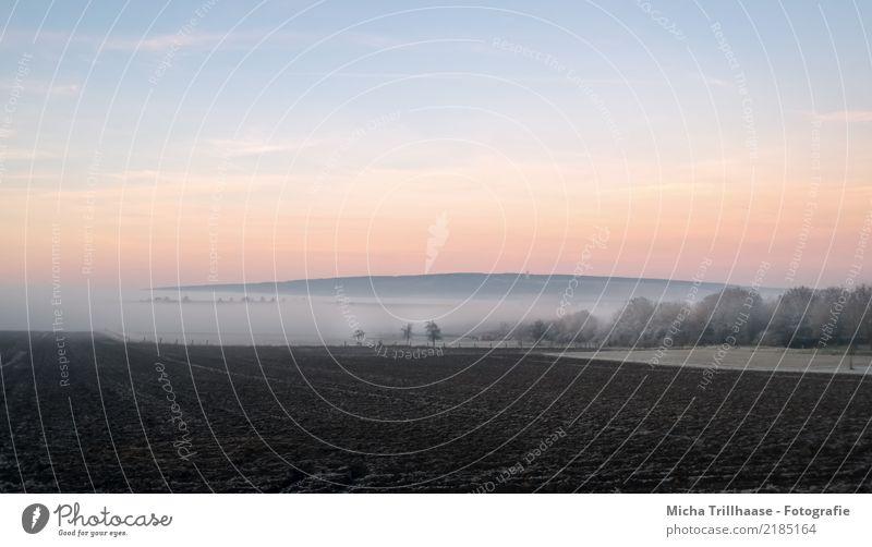 Nebellandschaft Natur Landschaft Erde Sand Himmel Wolken Horizont Sonne Sonnenaufgang Sonnenuntergang Sonnenlicht Herbst Winter Eis Frost Pflanze Baum Sträucher