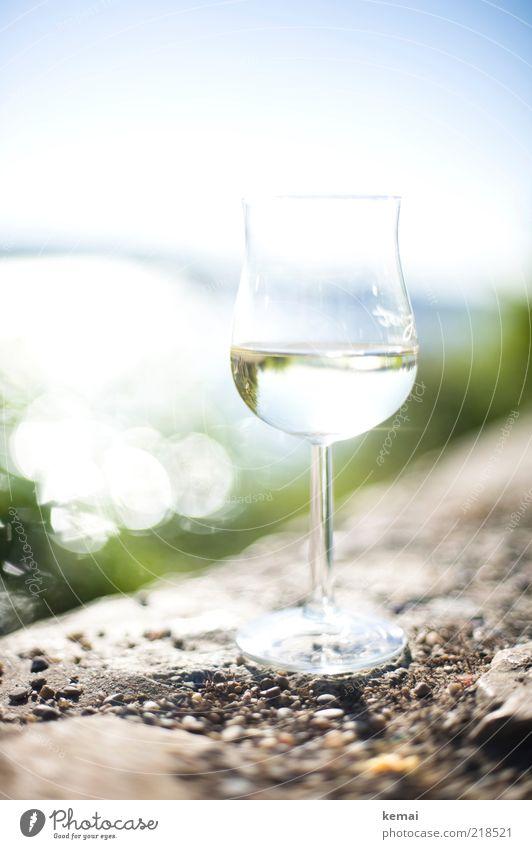 Ein Glas Riesling Lebensmittel Rheingau Getränk trinken Alkohol Wein Weißwein Weissweinglas Sonnenlicht Sommer Schönes Wetter Stein elegant hell lecker
