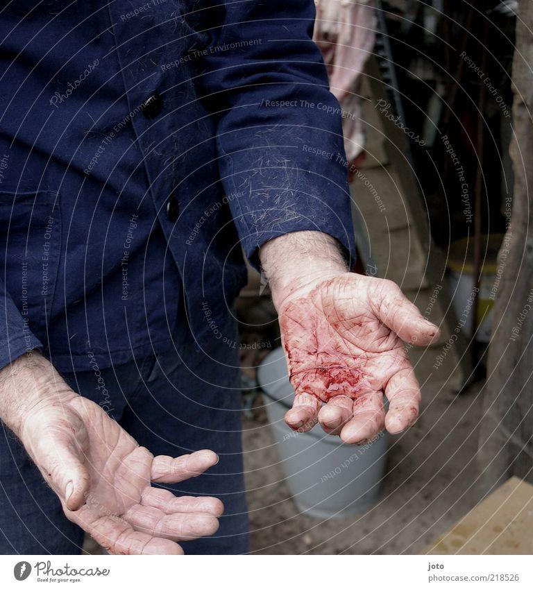 """""""Denn eure Hände sind mit Blut befleckt..."""" maskulin Mann Erwachsene Hand dreckig Gefühle Schmerz Schlachtung töten Mord Krimineller Mörder Farbfoto"""
