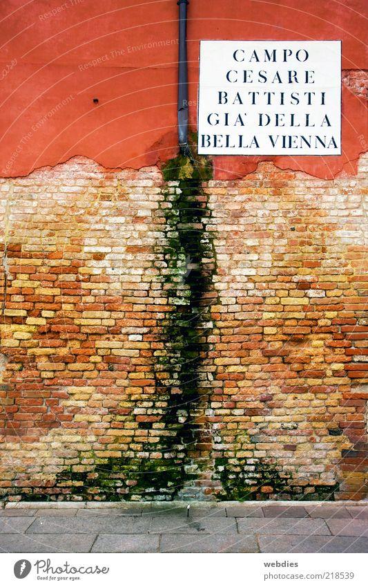 Strukturwandel in Venedig Stadt grün rot Ferien & Urlaub & Reisen Haus Wand Mauer braun dreckig Architektur Umwelt Wandel & Veränderung Italien Vergänglichkeit