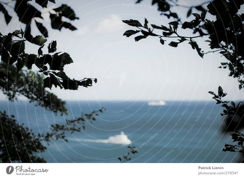 Kreuzfahrt Natur Wasser Himmel Meer Sommer Ferien & Urlaub & Reisen Landschaft Luft Wasserfahrzeug Küste Wetter Umwelt Horizont Ausflug fahren Aussicht