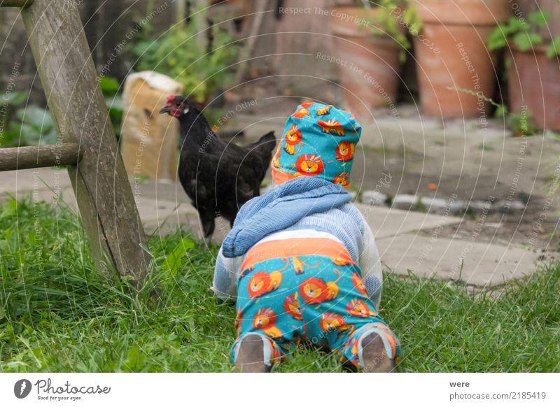 Entdecker Kind Mensch Natur Tier Vogel Baby niedlich Neugier Landwirtschaft Bauernhof Kleinkind Forstwirtschaft 0-12 Monate Nutztier