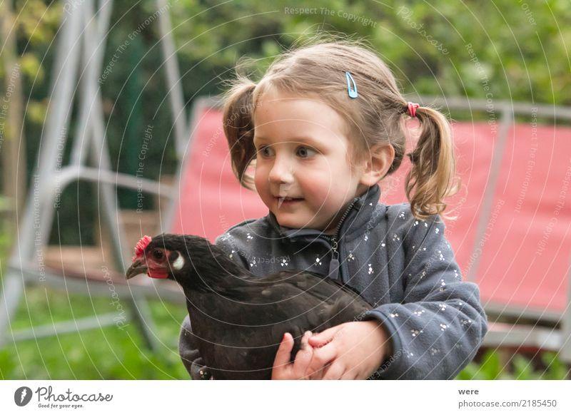 Tierliebe Kind Mensch Natur Spielen Vogel Zusammensein Kindheit Landwirtschaft streichen Bauernhof positiv Forstwirtschaft Haushuhn Hahn Geflügel