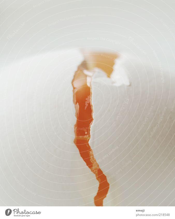 EI am a Vulkanausbruch Lebensmittel gelb weiß Riss Ei Eigelb Hülle Eierschale Hühnerei Kalk puristisch Farbfoto Nahaufnahme Detailaufnahme Makroaufnahme