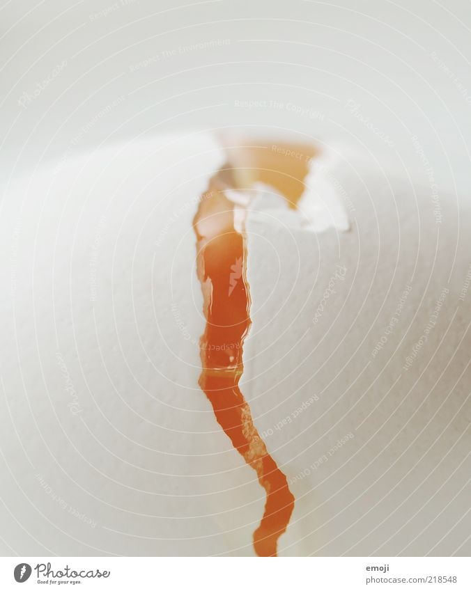 EI am a Vulkanausbruch weiß gelb Lebensmittel kaputt Ei Riss zerbrechlich Spalte Vogeleier Tier Ernährung Makroaufnahme Stilrichtung Anschnitt Hülle