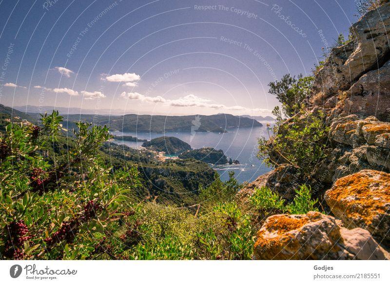 Blick von Angelokastro I Landschaft Pflanze Wasser Himmel Wolken Horizont Sommer Schönes Wetter Baum Sträucher Wildpflanze Küste Korfu Sehenswürdigkeit
