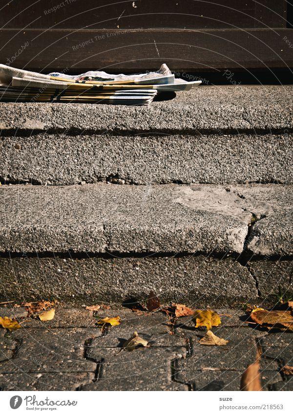 Sonntagmorgen alt Einsamkeit Umwelt Herbst Wege & Pfade liegen Tür Treppe trist Zeitung Werbung Eingang Riss Herbstlaub Post Zeitschrift