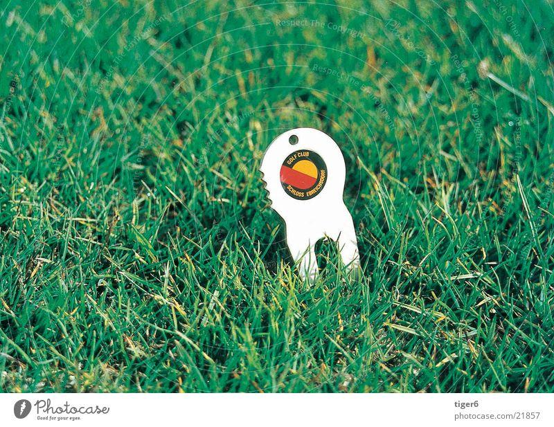 Die Gabel im Gras Natur Golf