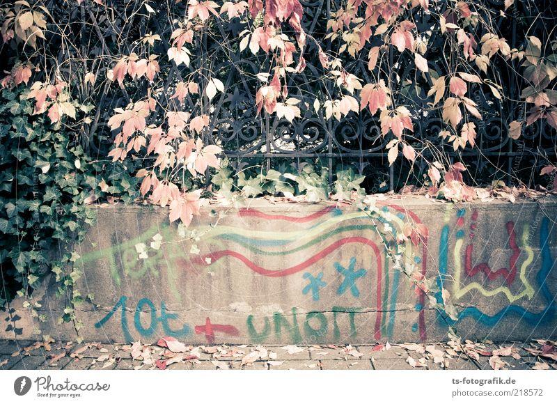 Fußnote blau rot Blatt schwarz Farbe Herbst Wand grau Stein Mauer Wege & Pfade Linie Graffiti braun Metall Beton