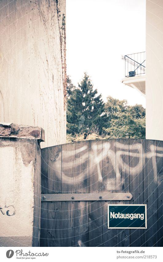 Gangausnot Pflanze Baum Menschenleer Haus Gebäude Mauer Wand Fassade Balkon Tür Tor Hinterhof Notausgang Zeichen Schriftzeichen Graffiti braun gelb stagnierend