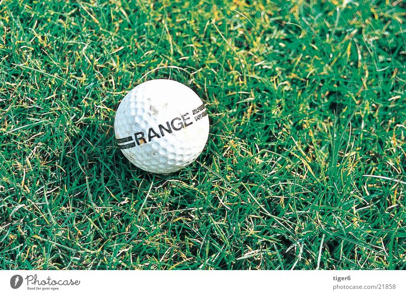 Ball auf Wiese Natur Sport Wiese Ball Golf