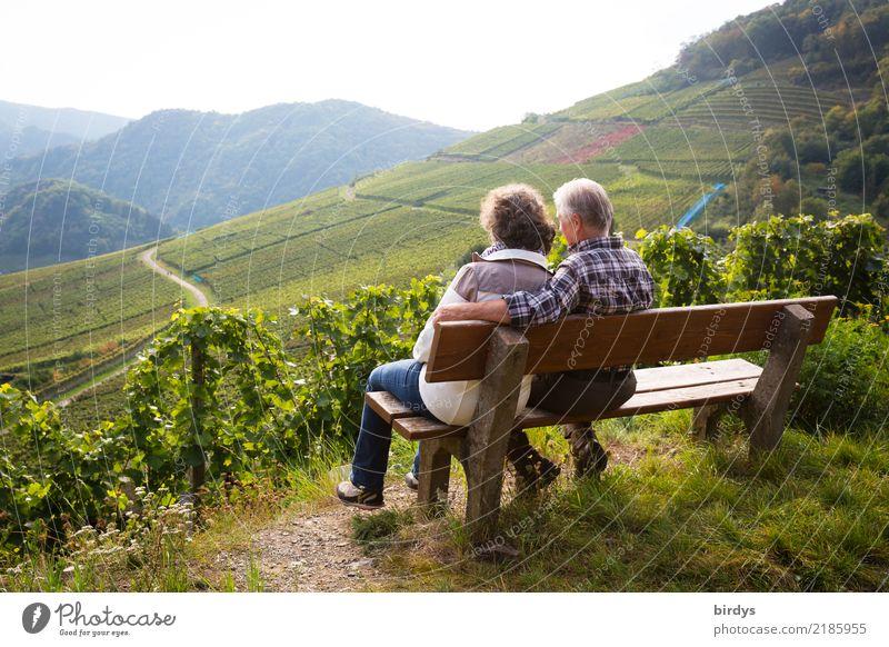Ein Seniorenpaar sitzt entspannt auf einer Bank im Weinberg und genießt den Ausblick Wohlgefühl ruhig Ausflug maskulin feminin Weiblicher Senior Frau