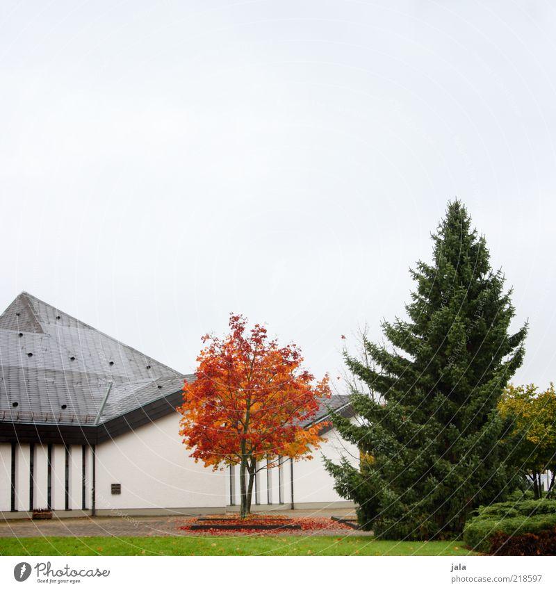 herbst - grün, rot, grau Natur Himmel Pflanze Baum Gras Sträucher Park Haus Bauwerk Gebäude Architektur Fassade Dach trist Farbfoto Außenaufnahme Menschenleer