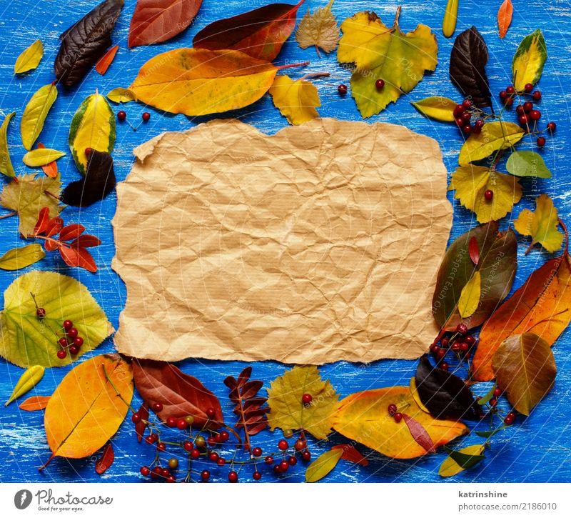 Herbstlaub und -papier auf einem blauen Hintergrund Handwerk Blatt Wald Papier hell braun gelb rot Farbe Borte Botanik Ast farbenfroh Textfreiraum fallen Rahmen