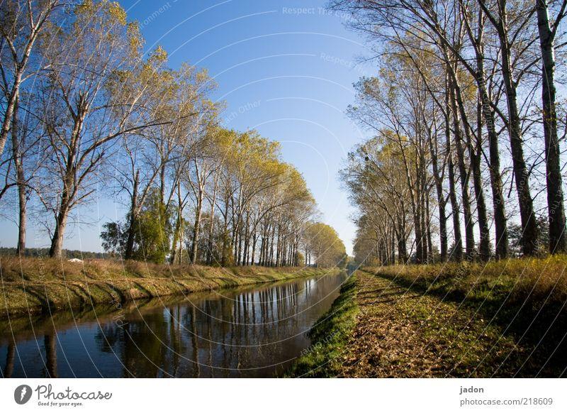 hinter der brücke über den fluss Umwelt Natur Landschaft Pflanze Wasser Herbst Baum Flussufer Straße Schifffahrt Unendlichkeit Zufriedenheit Wasserstraße