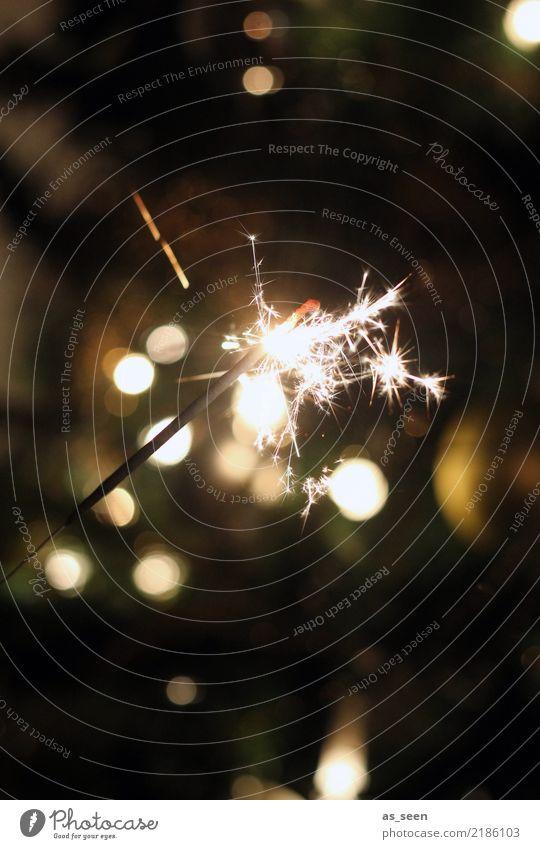 Magic Moment Lifestyle elegant Design Freude Nachtleben Party Veranstaltung Feste & Feiern Weihnachten & Advent Silvester u. Neujahr Jubiläum Kerze Wunderkerze