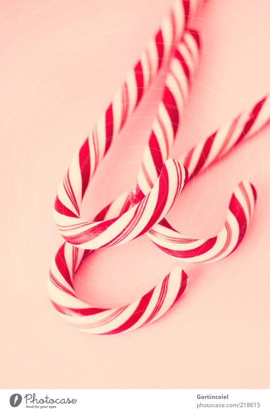 Zucker Rot-Weiß weiß rot Ernährung Lebensmittel süß lecker Süßwaren gestreift Zucker gekrümmt ungesund Zuckerstange