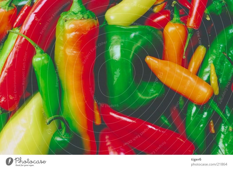 Paprika Ernährung Gesundheit Gemüse arrangiert