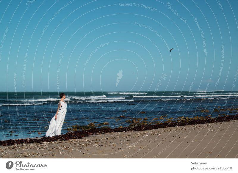 Die Frau, die Möwe und das Meer Ferien & Urlaub & Reisen Tourismus Ferne Freiheit Strand Wellen Mensch feminin Erwachsene 1 Umwelt Natur Landschaft Wasser