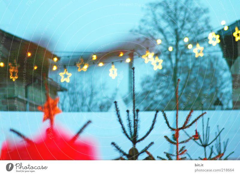 Wildschweindöner und 'ne Tasse Glühwein in der Hand Natur Weihnachten & Advent Baum blau rot Winter Haus kalt Schnee Stimmung Stern Nebel Stern (Symbol) Weihnachtsbaum Tanne