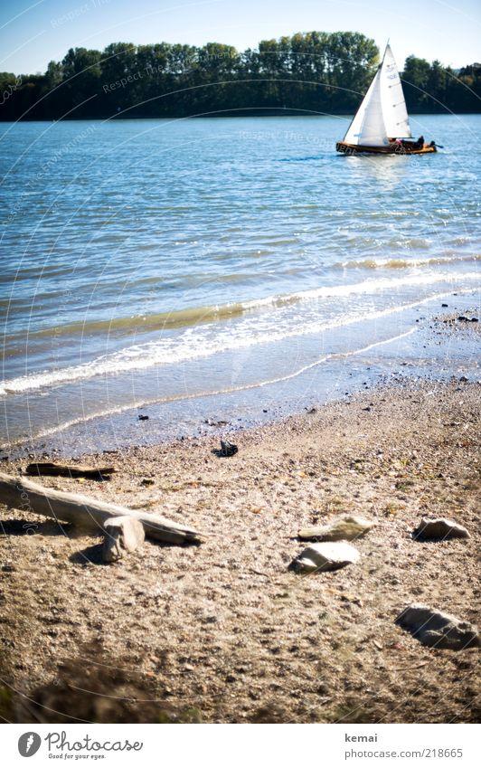 Inselfeeling Umwelt Natur Landschaft Pflanze Urelemente Sand Wasser Himmel Sonnenlicht Sommer Schönes Wetter Wärme Baum Wellen Küste Flussufer Rhein Rheingau