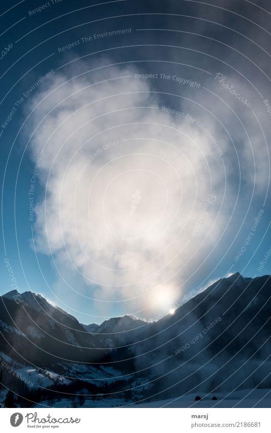 Kälte sichtbar gemacht Natur blau Winter Berge u. Gebirge Leben kalt Schnee Eis Schönes Wetter Frost Erscheinung Halo Kunstschnee