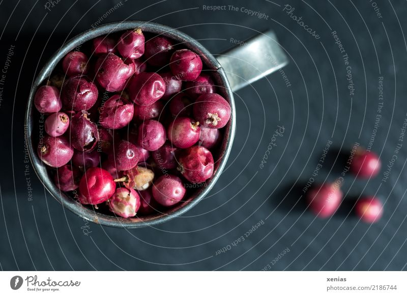 Rote Pfefferbeeren in silbernen Behälter aus Zink Kräuter & Gewürze Schinusbeeren Weihnachtsbeere Ernährung Bioprodukte Becher rosa rot getrocknet aromatisch