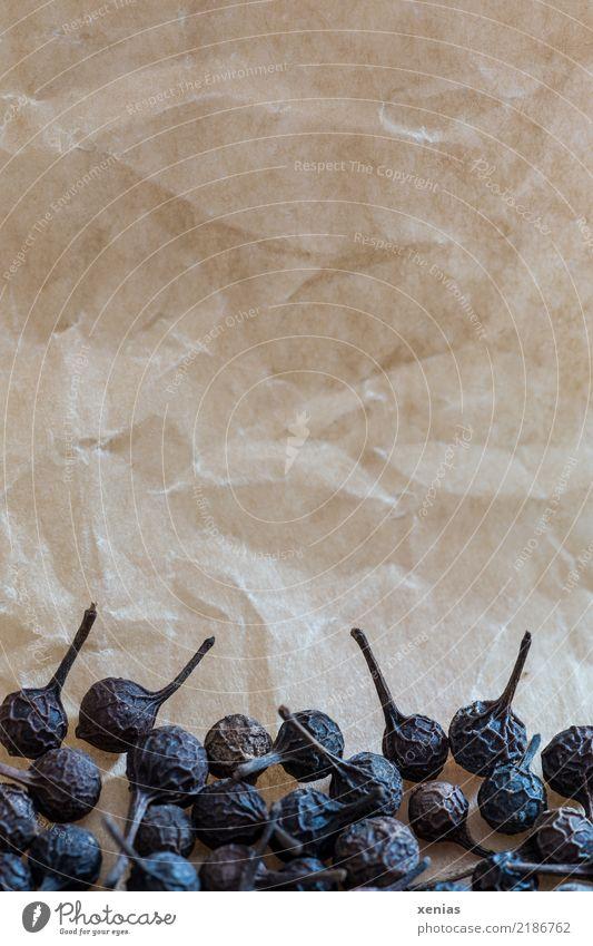 Stiel-Pfeffer vor Pergament Lebensmittel Kräuter & Gewürze Kubeben-Pfeffer Piper cubeba Heilpflanzen Pfeffergewächse Ernährung Bioprodukte Gesundheit