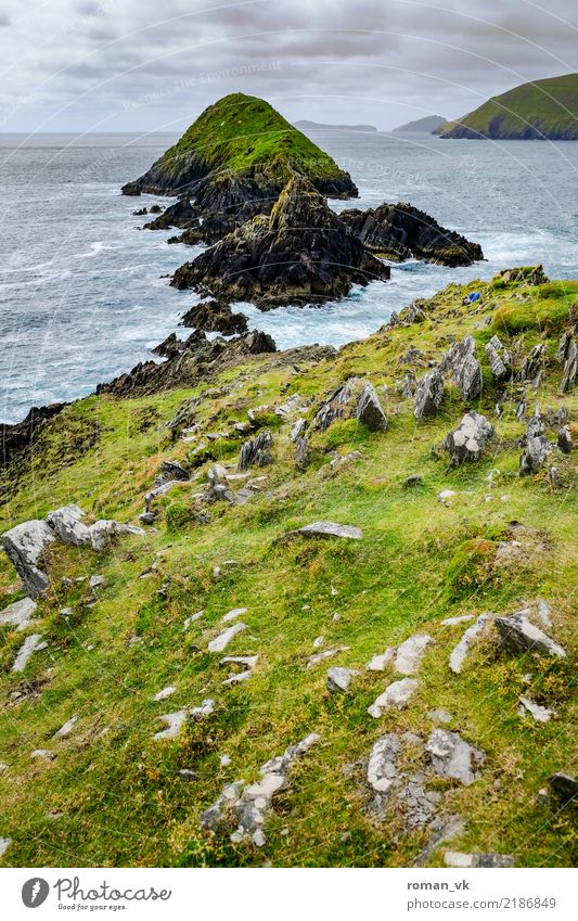 Inselgruppe vor Irland Umwelt Natur Landschaft Pflanze Urelemente Erde Wasser Wolken Horizont Gras Wiese Felsen Küste Fjord Meer ästhetisch kalt Tugend Fernweh