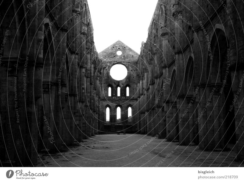 San Galgano (Italien) II alt ruhig Einsamkeit Fenster Stein Mauer Stimmung Religion & Glaube Europa Kirche gruselig Ruine Respekt Bogen