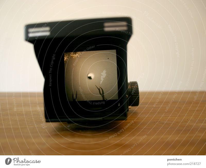 Durch den Sucher alt weiß schwarz Wand Holz braun Tisch liegen Fotokamera Nostalgie Horn Mittelformat