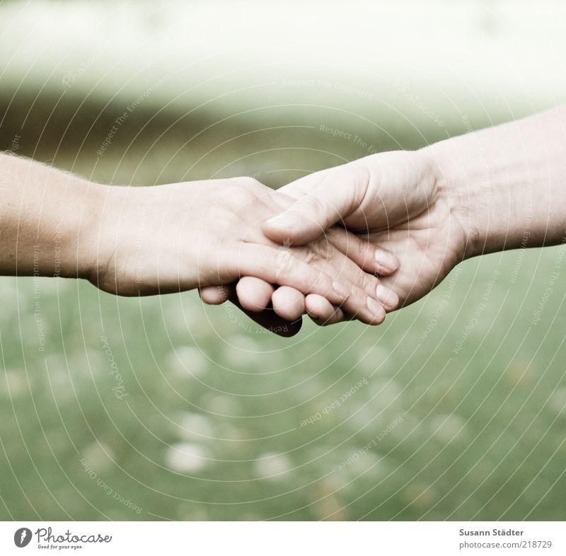 zusammen Mensch Hand feminin Paar Familie & Verwandtschaft Haut Arme Kraft Erfolg Hoffnung berühren festhalten Freundlichkeit fest Vertrauen Zusammenhalt