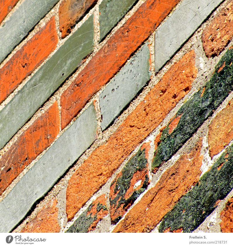 backe, backe steine 1 alt rot ruhig schwarz Wand grau Mauer Linie braun ästhetisch authentisch einfach fest Backstein historisch Fuge