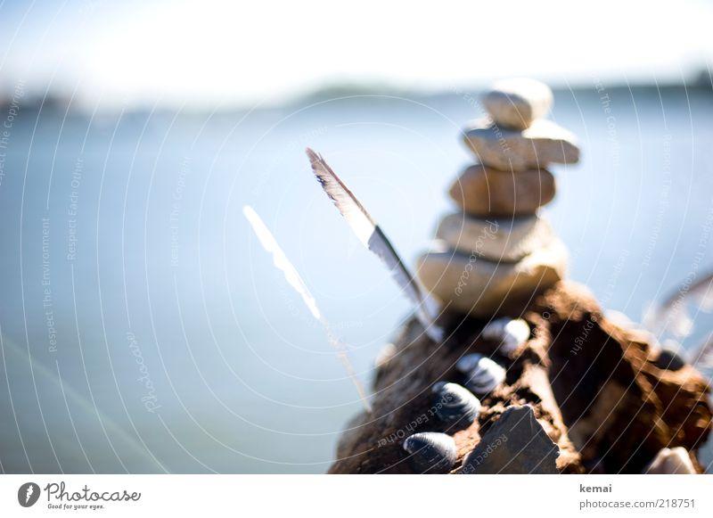 Steinmännchen am Rhein Wasser Sommer Herbst Holz hell klein Feder Turm Dekoration & Verzierung Zeichen Schönes Wetter Muschel Stapel Wegweiser Licht