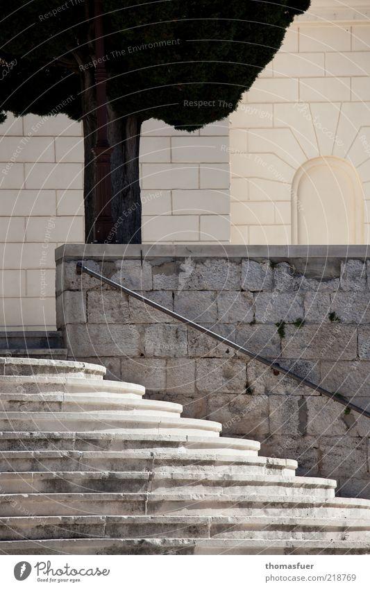 strenge Klarheit alt Baum Sommer Ferien & Urlaub & Reisen Wand Stil Mauer Architektur Beton Fassade Treppe ästhetisch Tourismus Bauwerk historisch