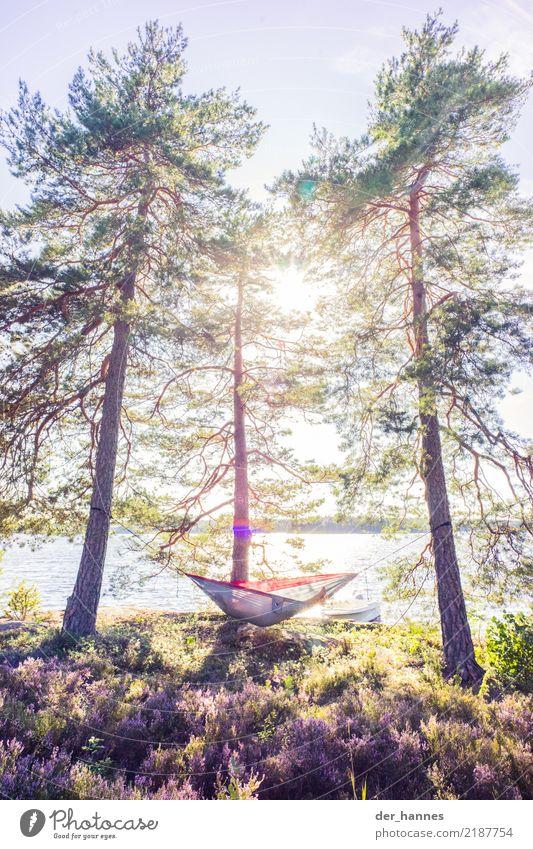 time to relax Mensch Natur Ferien & Urlaub & Reisen Wasser Baum Landschaft Erholung ruhig Freude Ferne Wald Wärme Lifestyle Freiheit See Ausflug