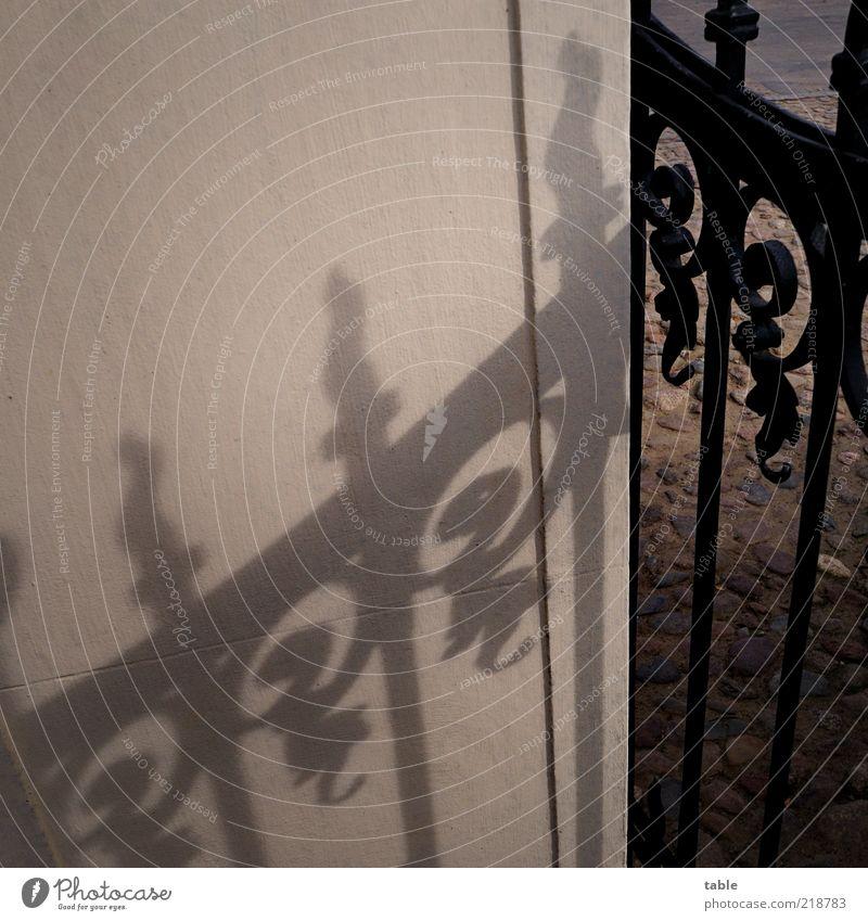 beschatten Mauer Wand Stein Metall alt ästhetisch dunkel eckig braun grau schwarz Tor Einfahrt Eingangstor Muster Eisen Schmiedeeisen Schmiedekunst Handwerk