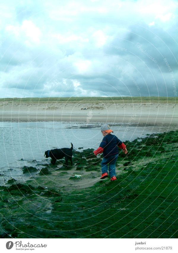 Kind mit Hund an der Nordsee Mann Wasser Meer Strand Suche Niederlande