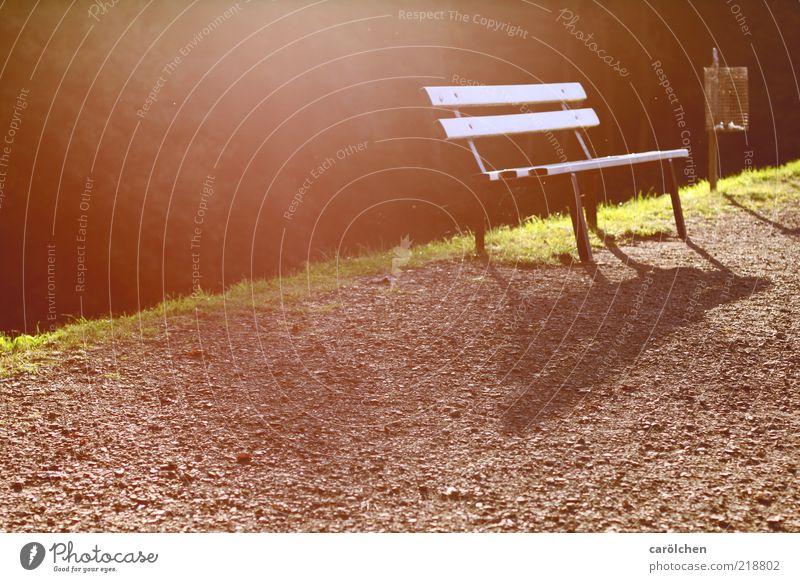 ... und hab im Rücken die letzte Wärme. grün ruhig Erholung Herbst Wege & Pfade Park braun Pause Bank Müllbehälter Detailaufnahme Parkbank Wegrand erholsam