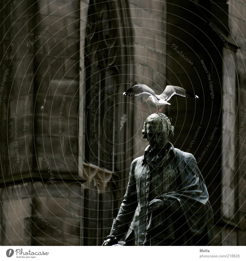 Duldsamkeit Skulptur Statue Edinburgh Schottland Altstadt Kirche Mauer Wand Fenster Denkmal Stein alt dunkel grau Stimmung Ehre Religion & Glaube Kultur Kunst