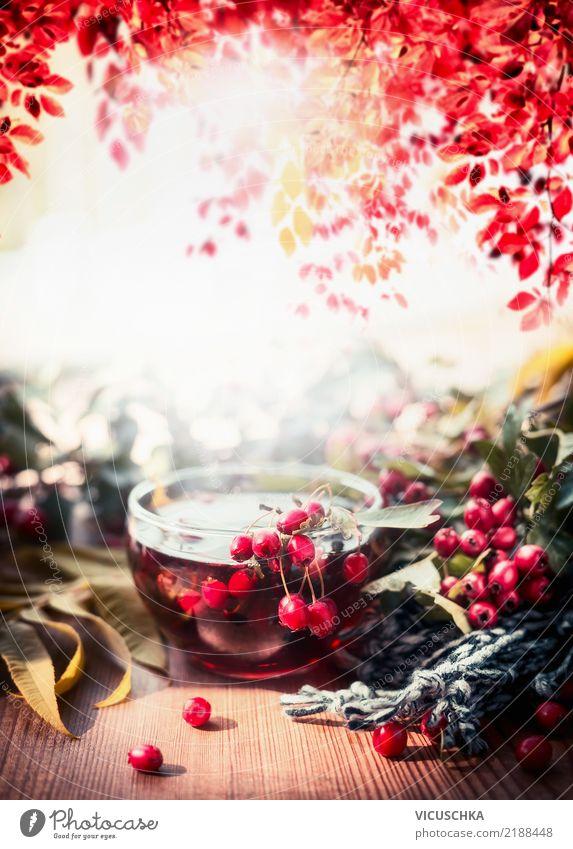Tasse Tee mit roten Beeren auf herbstlichem Gartentisch Getränk Heißgetränk Lifestyle Design Leben Tisch Natur Pflanze Herbst Schönes Wetter Wärme Baum Blatt