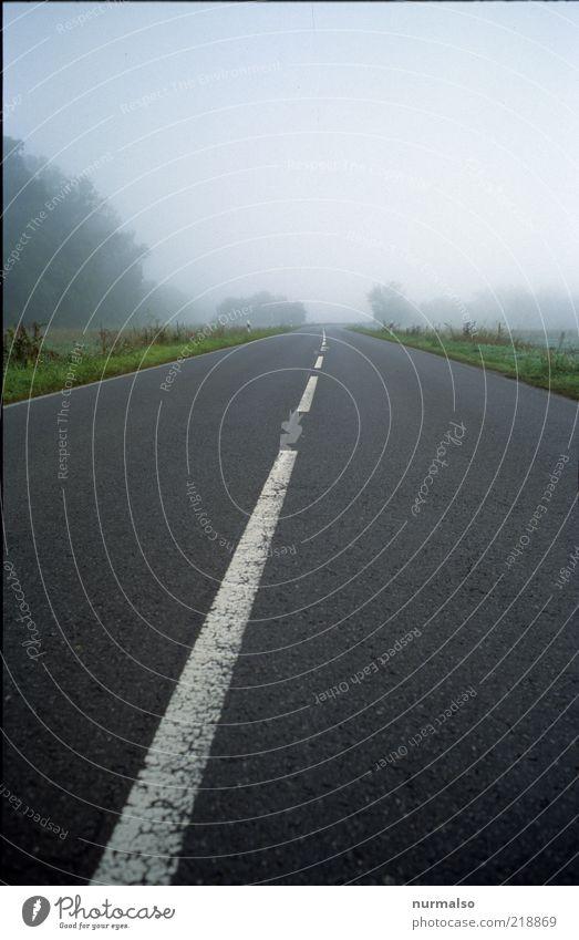 dem Nebel zu ruhig Einsamkeit Ferne Straße Freiheit Wege & Pfade Landschaft Linie gehen Nebel Umwelt Horizont leer authentisch Klima dünn