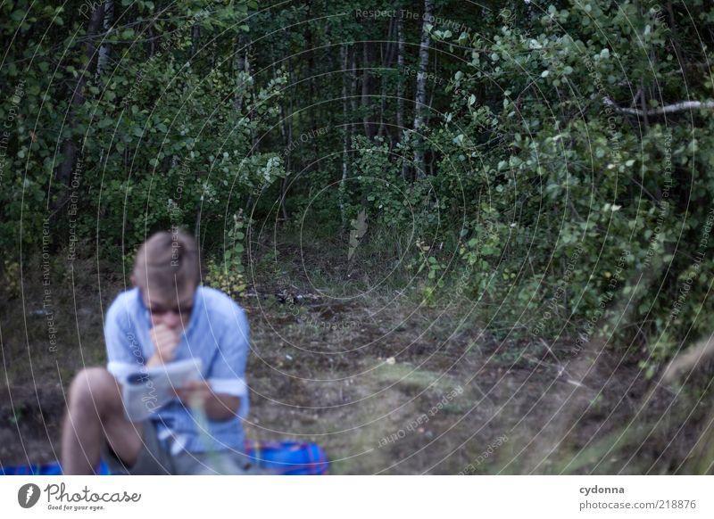 Vertieft Lifestyle Erholung ruhig Freizeit & Hobby Ausflug wandern Mensch Junger Mann Jugendliche Printmedien Zeitung Zeitschrift lesen Umwelt Natur Sommer Baum