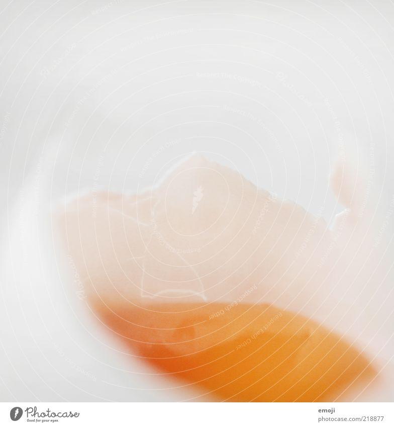 glibbrig weiß Ernährung gelb kaputt Ei Riss Bioprodukte zerbrechlich Lebensmittel Unschärfe Hülle Bruch Makroaufnahme Eigelb Eiklar Hühnerei