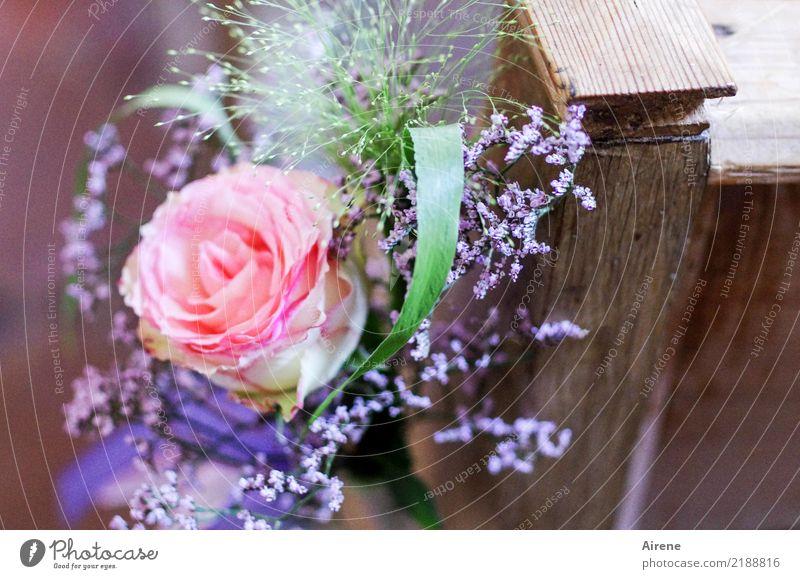für rosige Zeiten grün Liebe Gefühle Holz Glück Feste & Feiern rosa Kirche Blühend Romantik Hochzeit violett Rose Blumenstrauß zart Duft