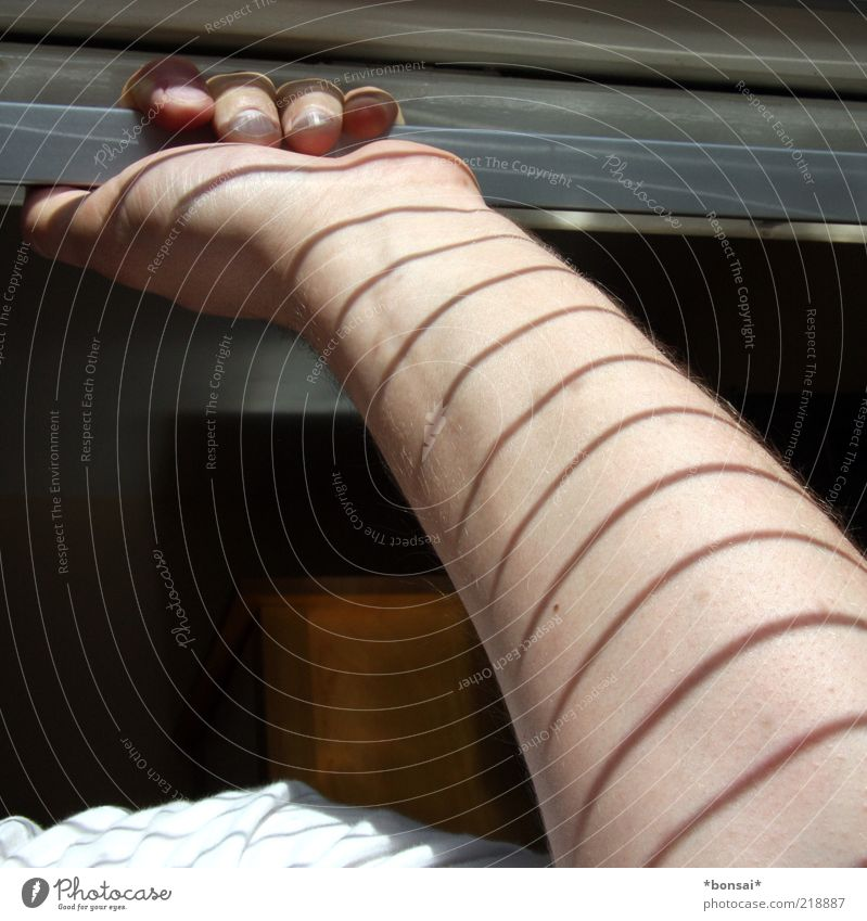 streifenärmchen Wohlgefühl maskulin Arme Hand 1 Mensch Fenster Jalousie Streifen berühren festhalten genießen leuchten Wärme ruhig Zufriedenheit Schattenspiel