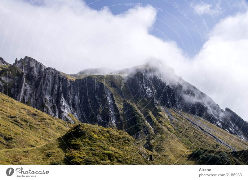 oberhalb der Baumgrenze Landschaft Himmel Wolken Schönes Wetter Nebel Felsen Alpen Berge u. Gebirge Bregenzerwald Gipfel wandern bedrohlich hoch Spitze blau