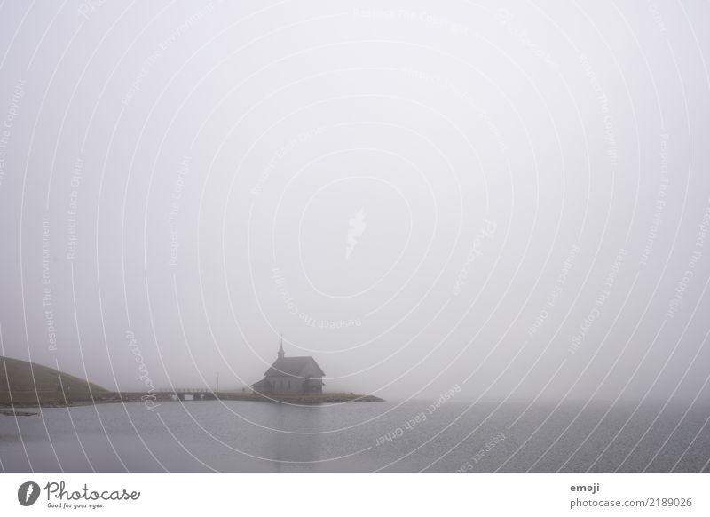 Melchsee Umwelt Natur Landschaft Herbst schlechtes Wetter Nebel Wiese See dunkel trist grau Traurigkeit Farbfoto Gedeckte Farben Außenaufnahme Textfreiraum oben