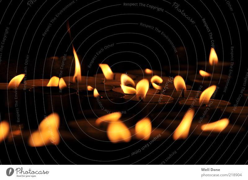 Sea of Lights Kerze Wärme Teelicht Flamme Farbfoto Innenaufnahme Nahaufnahme Tag Licht Schatten Kontrast Lichterscheinung Kerzenschein viele mehrere brennen