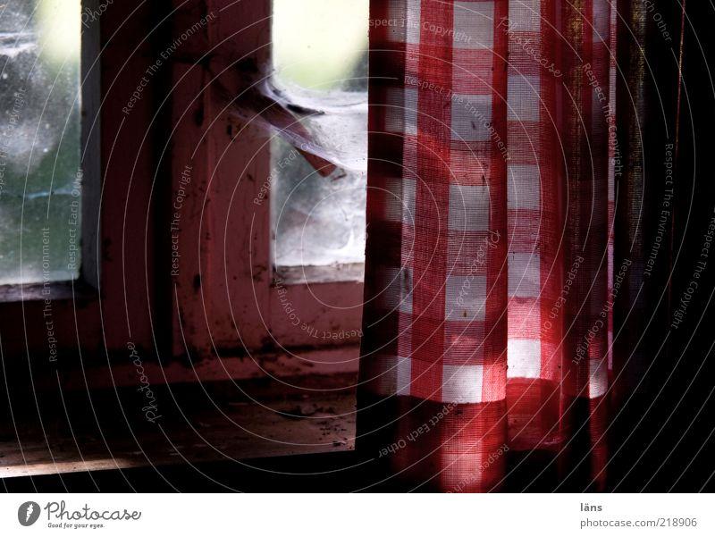 Hüttenromantik II Häusliches Leben Wohnung Haus Innenarchitektur Fenster Holz Glas alt Armut dreckig rot Wandel & Veränderung Gardine kariert Staub Unbewohnt